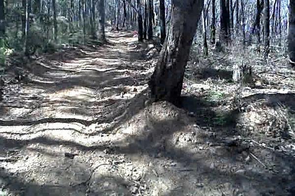 uphill_again.avi