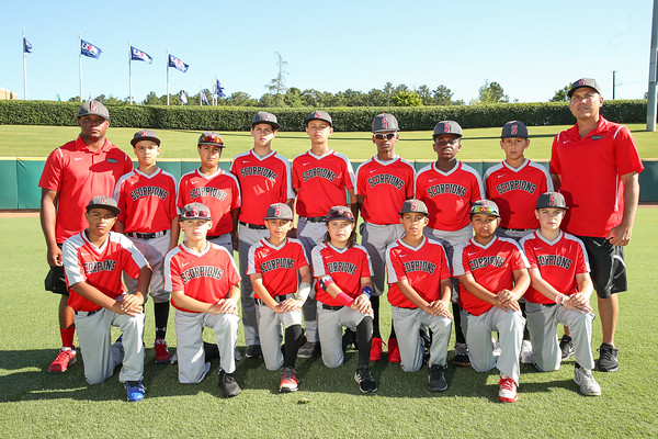 Scorpions Team Easton