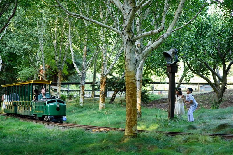 Neelam_and_Matt_Nestldown_Wedding-1532.jpg