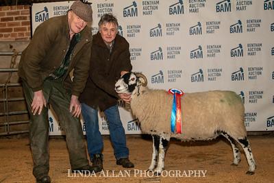 Bentham In Lamb Sale February 2020