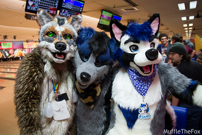Fremont Furbowl (May 2017)