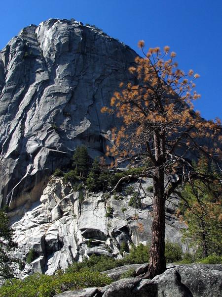 Half Dome Trail (31).jpg
