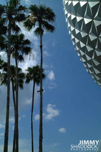 Disney 2005 396.jpg