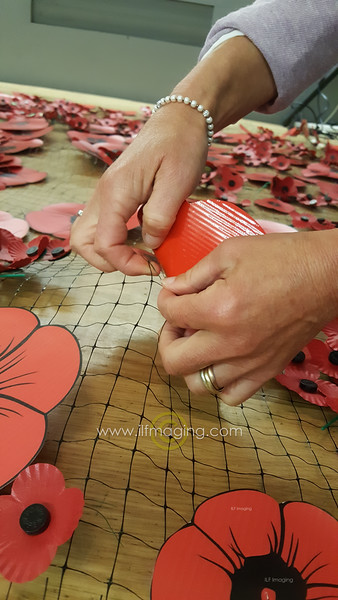 Creating the Cascading Poppies
