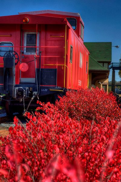 Red shrubbery blooms next to the red caboose at The Arts Depot in Abingdon, VA on Friday, October 19, 2012. Copyright 2012 Jason Barnette