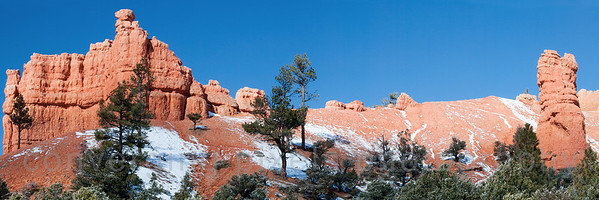 Red Canyon, at the entrance to Bryce.