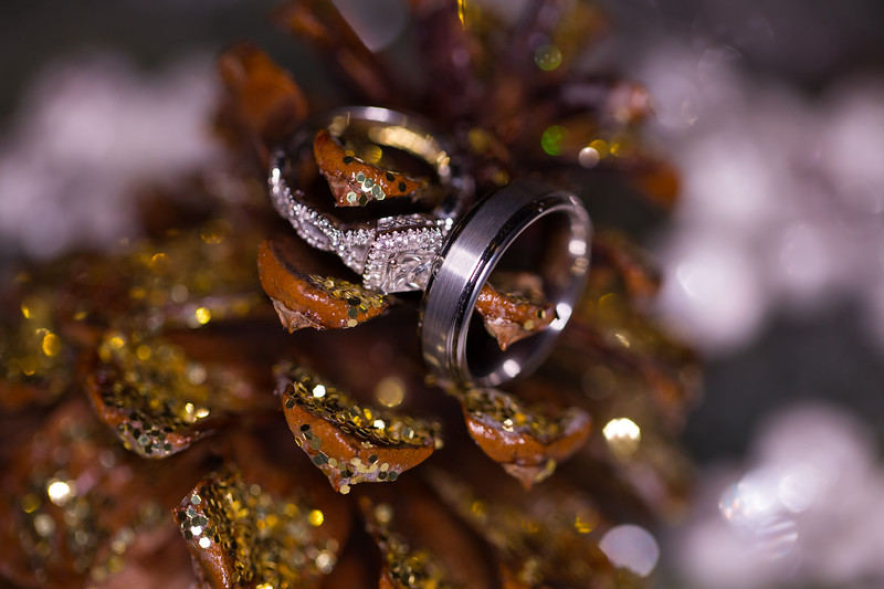 Wedding HC-36.jpg