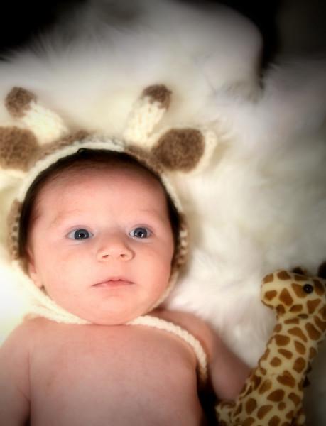 IMG_2977 Newborn Medel Giraffe.jpg
