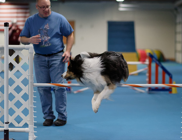 Agility Trial Sun. Nov 17th 2019