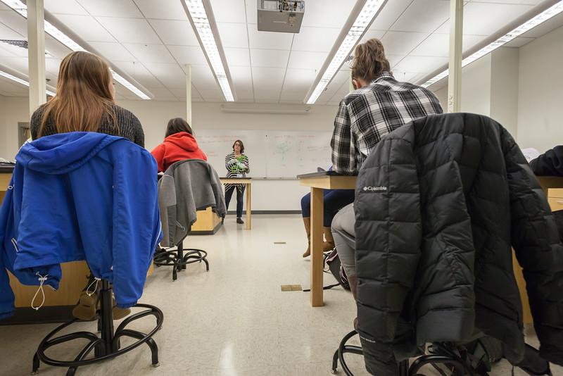 Alyssa Hakes Classroom-9.jpg