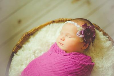 elena rose newborn
