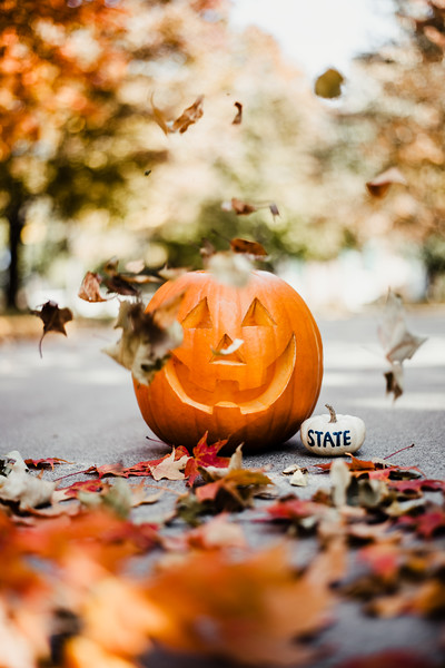 October 25, 2018 Halloween DSC_5703.jpg
