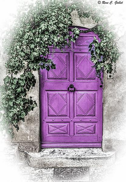 Magenta Town House Door