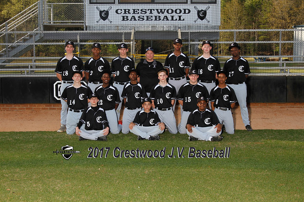 2017 baseball JV
