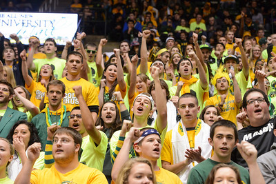 Green and Gold Spirit