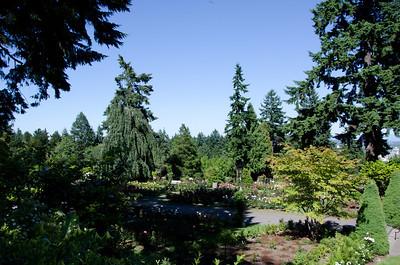 Rose Garden,Portland,OR,7/2011