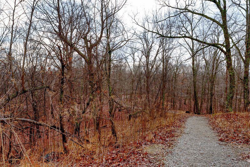 This photo was taken while being an invited guest on Bernheim's Backroads program