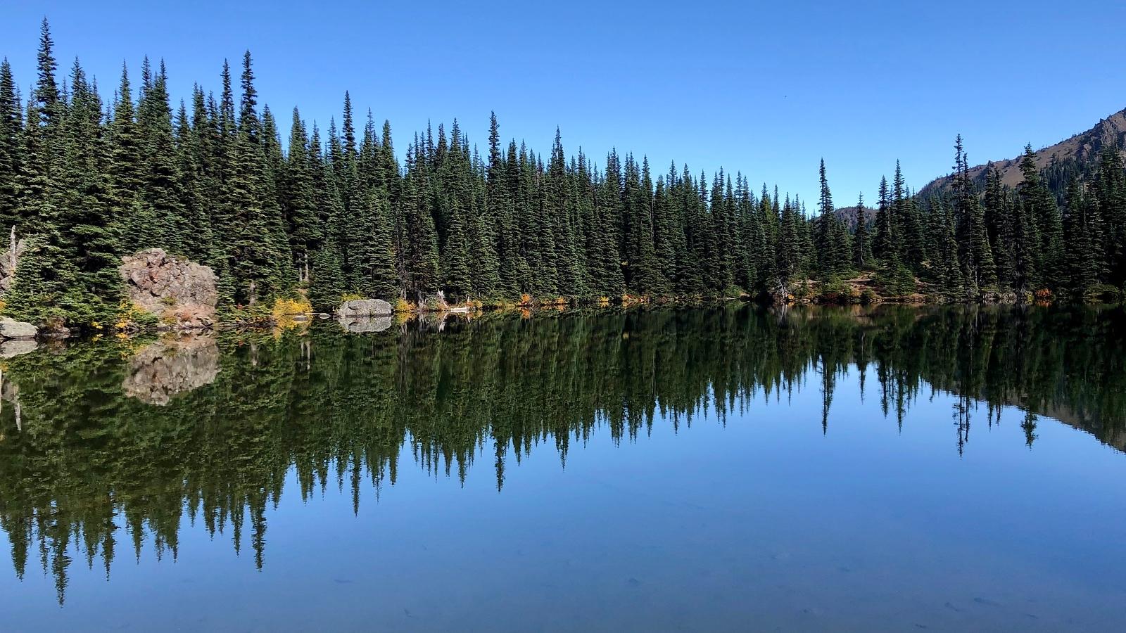 Silver Lake reflecting trees