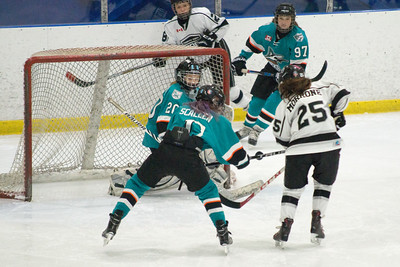 Bantam B OCT 14 - Sharks