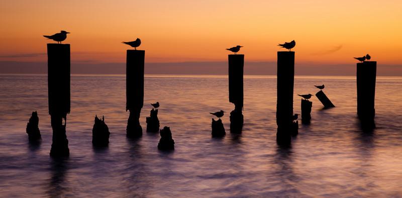20110104_Naples_Beach_Sunset_0245.jpg
