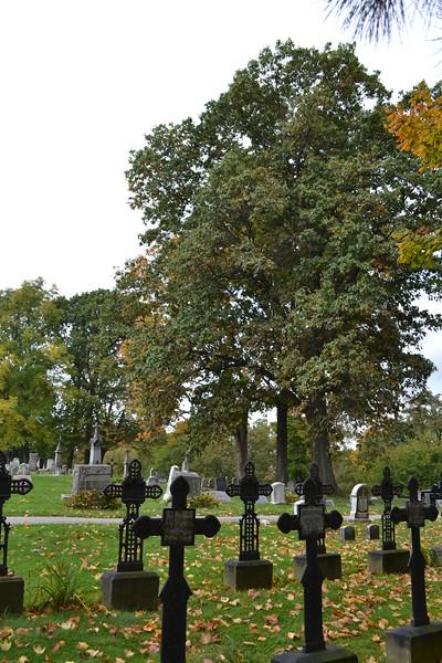 2012 Fall around campus (11).JPG