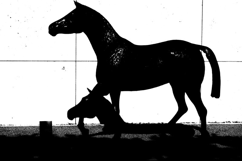 May 19 - Horse(s), The Getty, Los Angeles.jpg