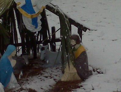 SNOW PHOTOS DECEMBER 11, 2008