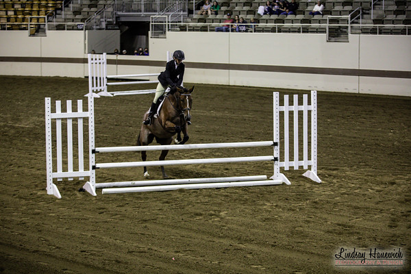 Hunt Seat Equitation Over Fences