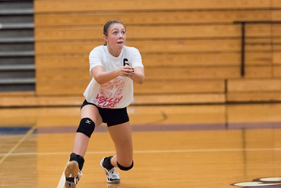 Volley4Cure-Sept-29-2015