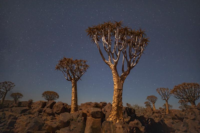 Namibia 69A3697.jpg