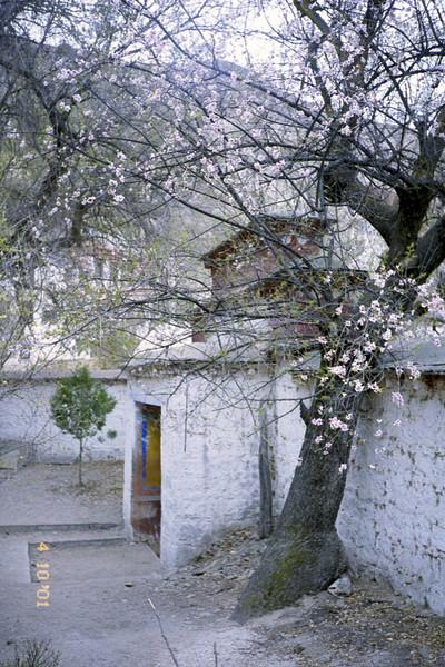 7-8-Serra Monastery - Monks Debating