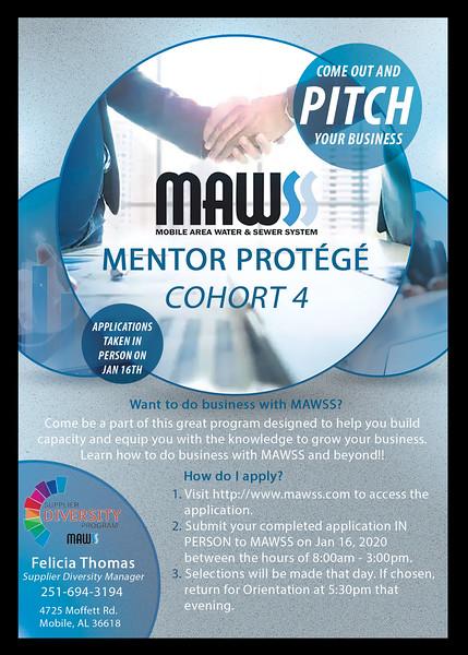 Mentor Protege Program Cohort 4-300res.jpg