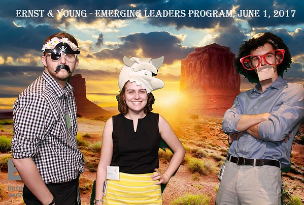 Ernst & Young - Emerging Leaders