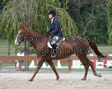 Hunter Ring:  Schooling Hunter/Low Adult U/S (Saturday)