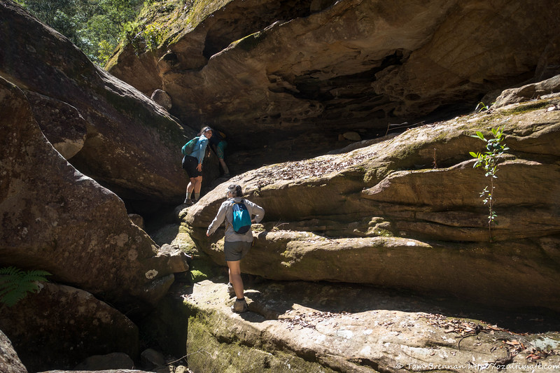 Heading up Pinchgut Creek