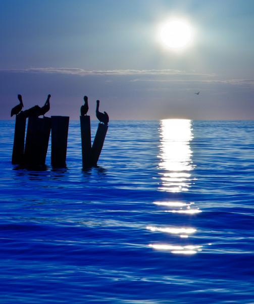 20110104_Naples_Beach_Sunset_0135.jpg