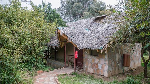 Day 2- In Masai Mara