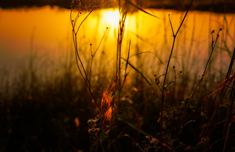The Magic of Light-398.jpg