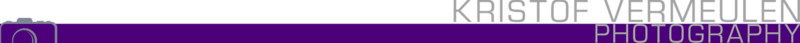 logo + camera left (white a1a1a1 - dark purple)_cutout.png