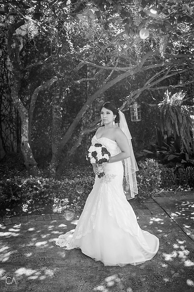 CAP-2014-Katherine-Josh-Wedding-Mr-Mrs-1009.jpg