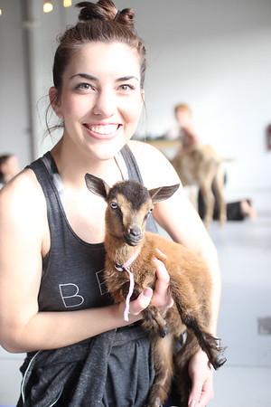 Paws Fur A Cause 2019 Goat & Bunny Yoga