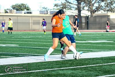 Zog Soccer 10/09/16