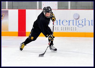 The Zone Hockey Training - Waterloo, ON