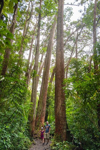 Hawaii2019-838.jpg