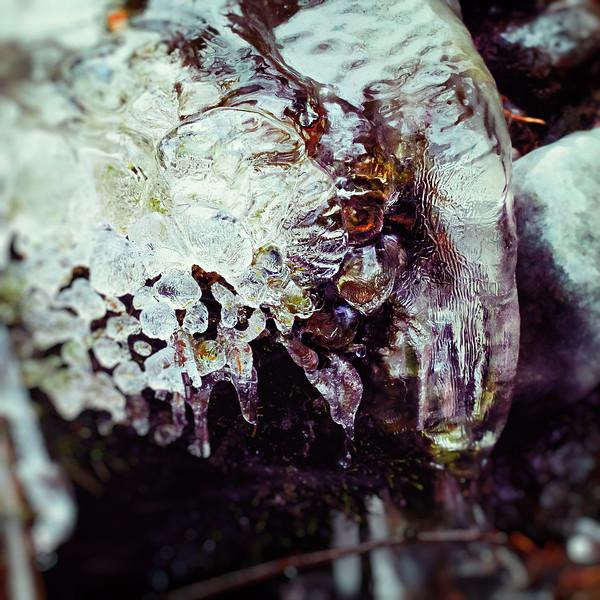Ice_IMG_3836.jpg