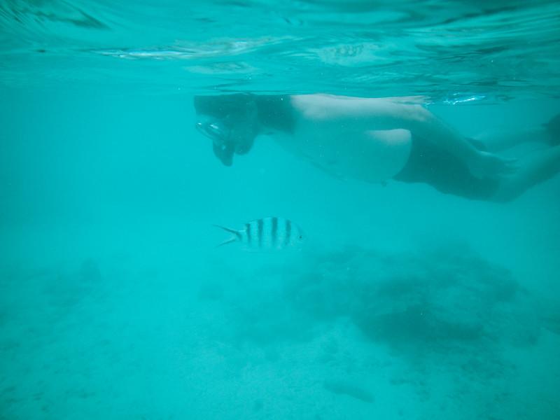 Rarotonga-Cook-Islands-2014-25.jpg