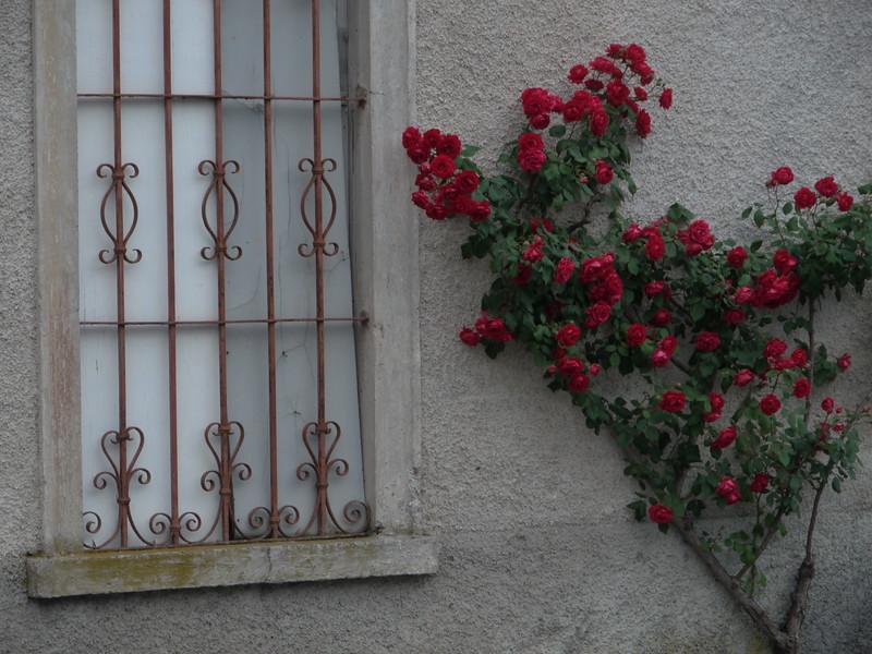 @RobAng 2015 / Castello, Lenna, Lombardia, ITA, Italien, 538 m ü/M, 01.06.2015 20:42:04
