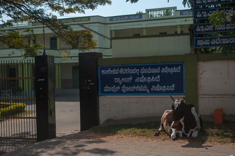 Bangalore-India-1055-2.jpg
