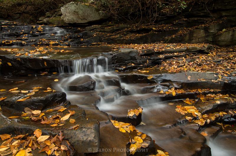 Leaf Covered Waterfall II