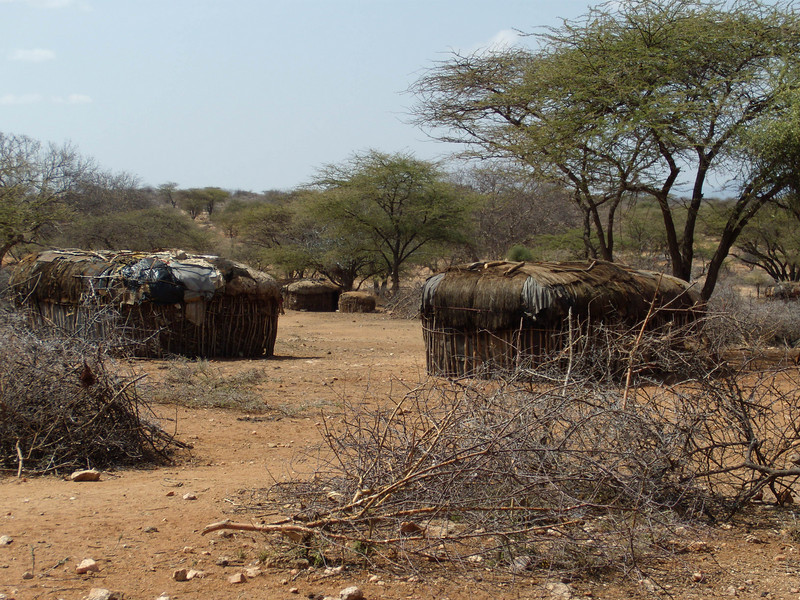 "Samburu village...the dried brush is used as a ""fence"""
